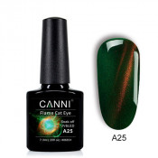 Гель-лак Canni 3D Flame Cat Eye A25 изумрудный