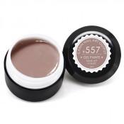 Гель-краска Canni-557 какао 5 мл