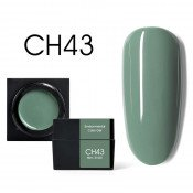 Цветной мусс-гель Canni CH43 сизый оливковый 5 мл