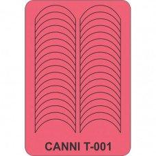 Трафарет для декора ногтей Canni T-001