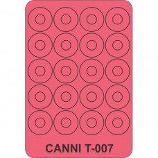 Трафарет для декора ногтей Canni T-007